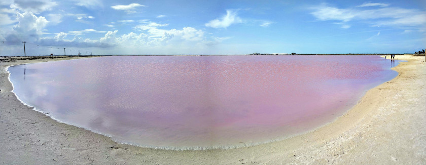 Las Coloradas, Rio Lagartos, Yucatan, Mexique © Second-Half Travels